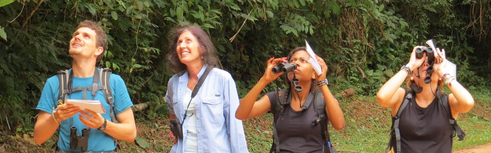 Members of the Muriqui Project of Caratinga and Dr. Karen Strier observing monkeys along a road.