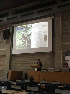 Dr. Strier gives a podium presentation at IPS 2018 in Nairobi, Kenya